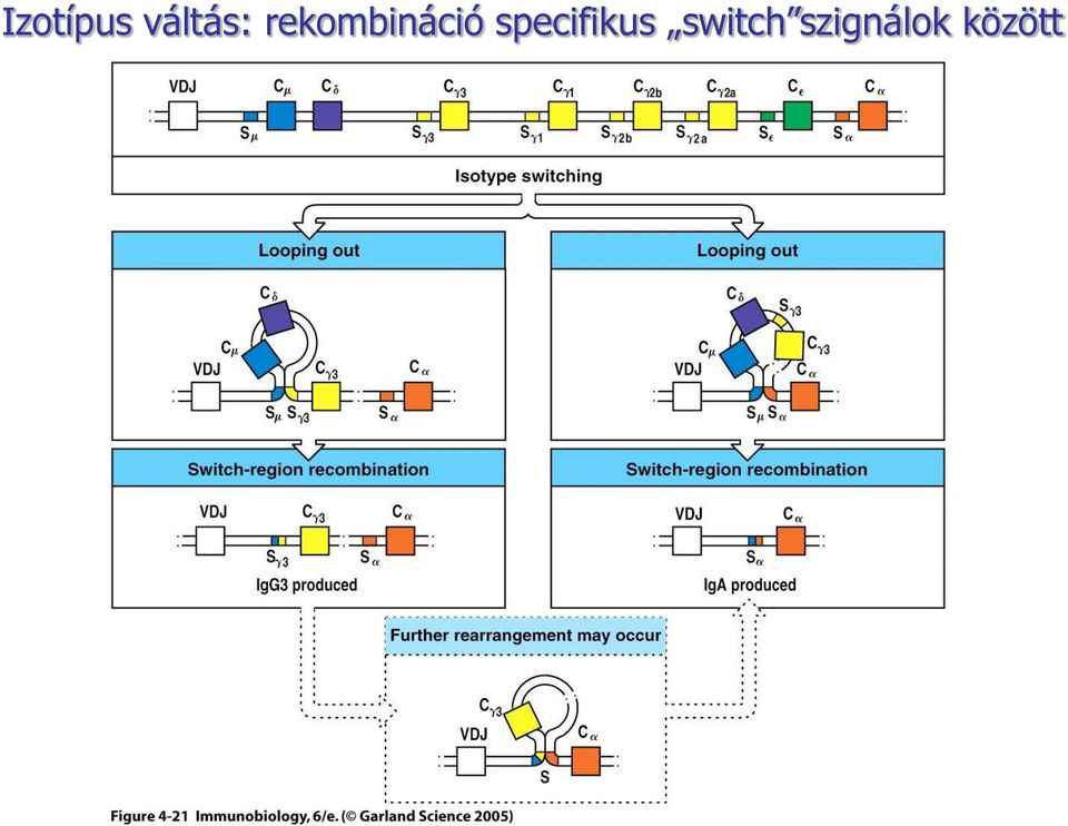 specifikus switch