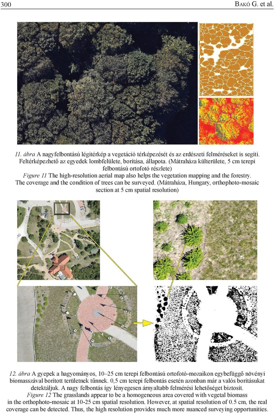 The coverage and the condition of trees can be surveyed. (Mátraháza, Hungary, orthophoto-mosaic section at 5 cm spatial resolution) 12.