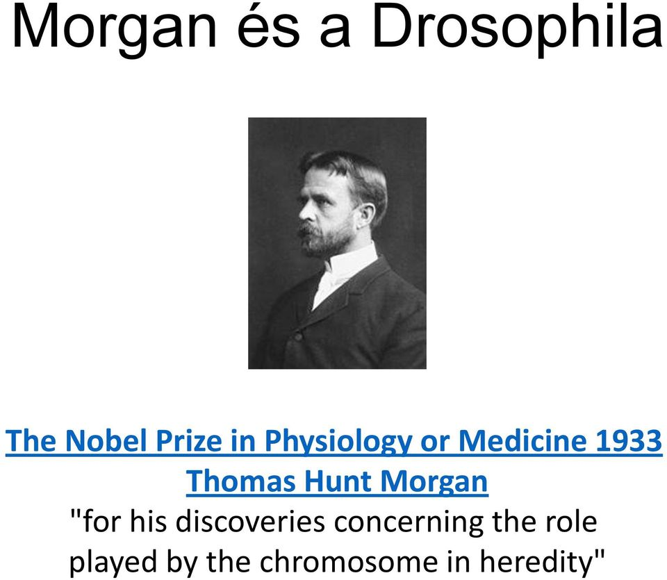 "Morgan ""for his discoveries concerning"