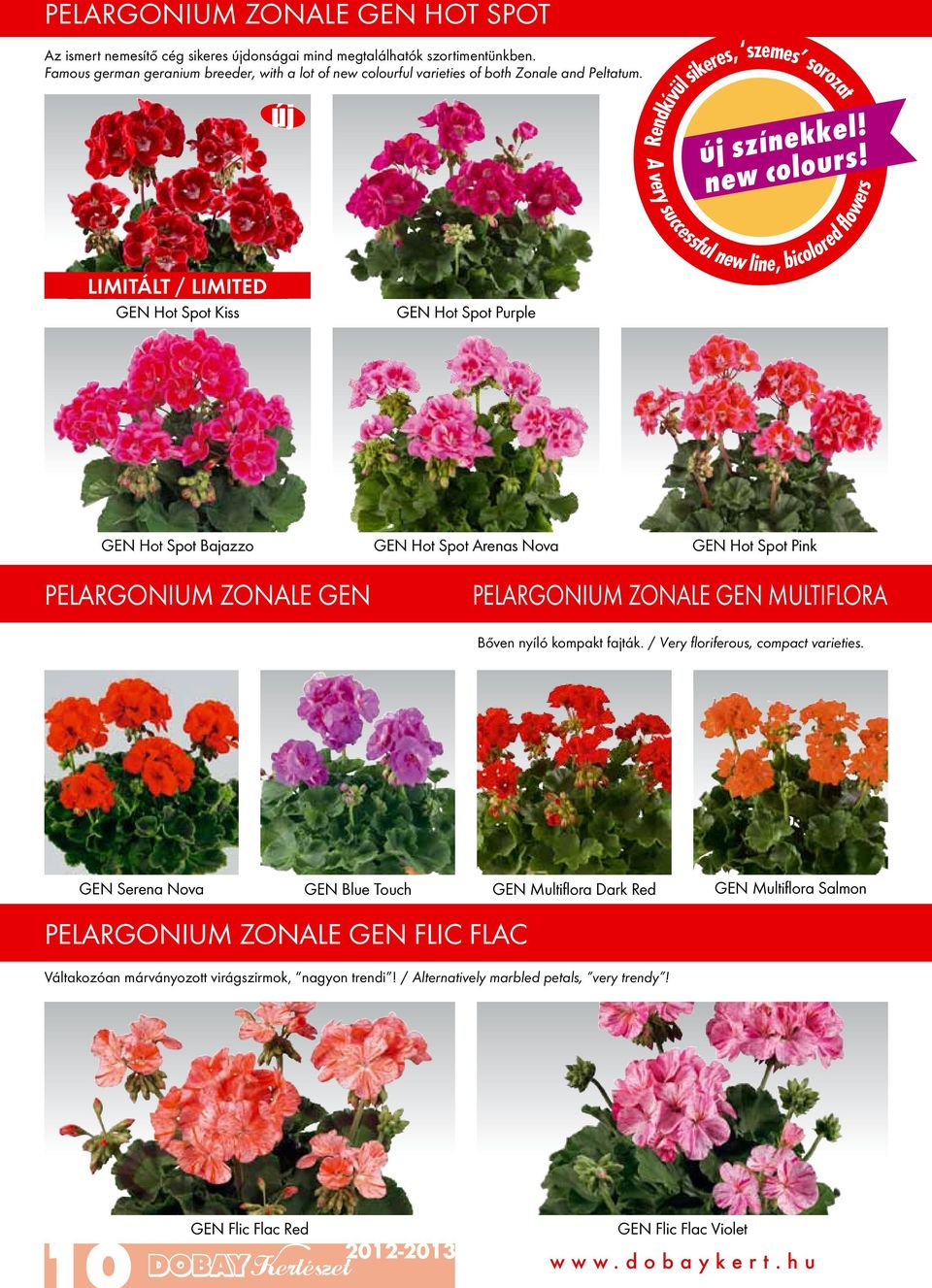 Rendkívül sikeres, szemes sorozat A very successful new line, bicolored flowers LIMITÁLT / LIMITED GEN Hot Spot Kiss GEN Hot Spot Purple GEN Hot Spot Bajazzo GEN Hot Spot Arenas Nova GEN Hot Spot