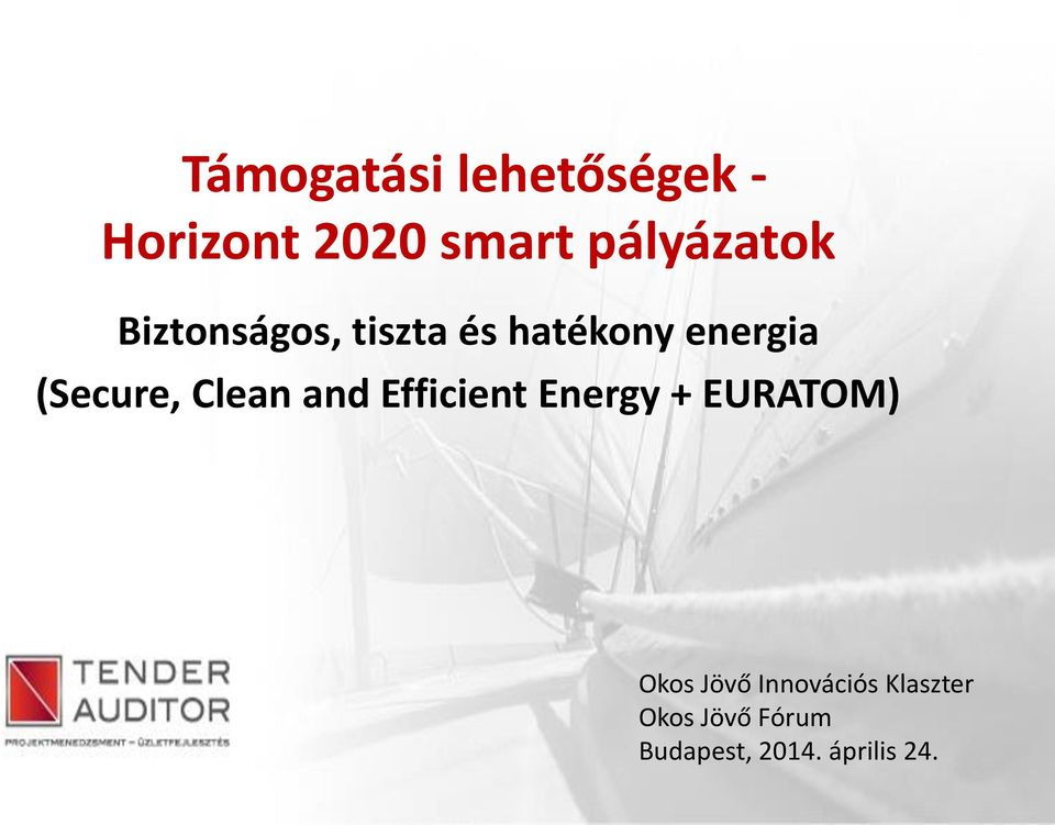(Secure, Clean and Efficient Energy + EURATOM) Okos