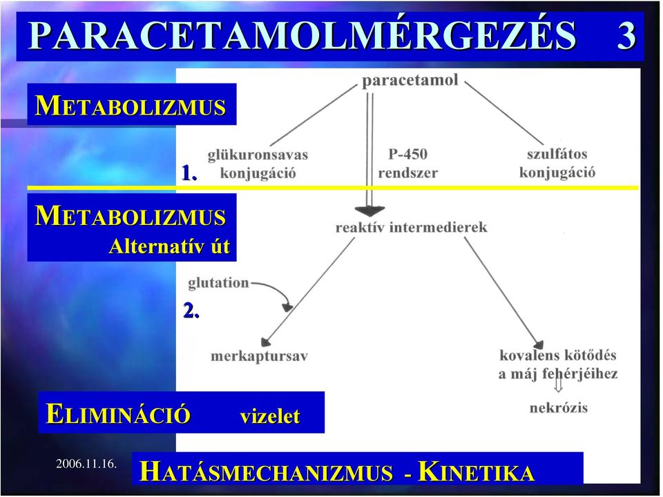 METABOLIZMUS Alternatív út 2.