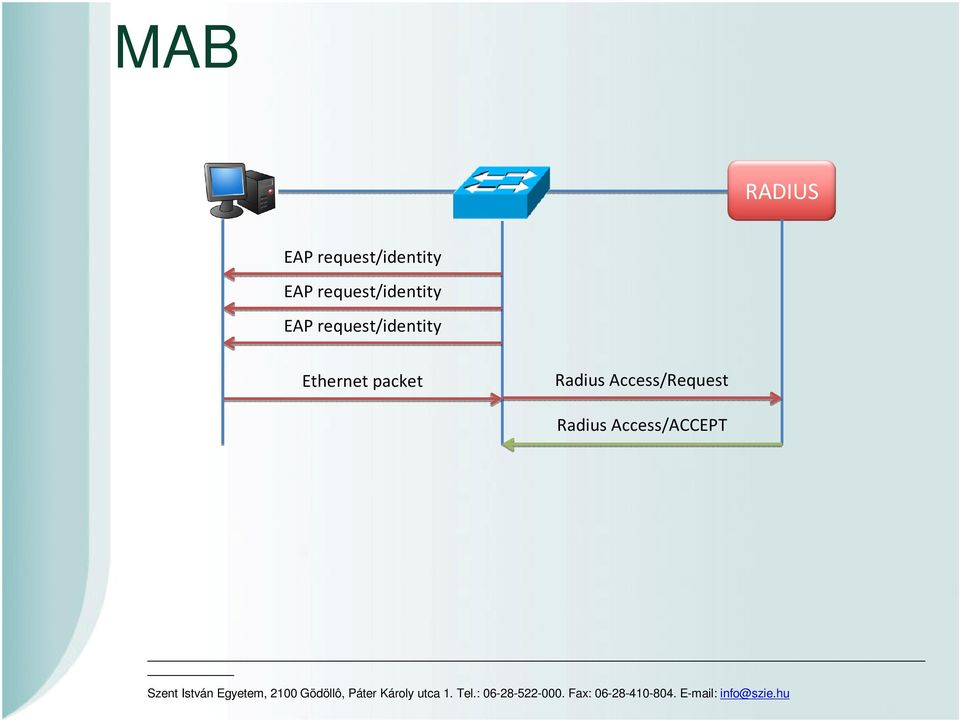 request/identity Ethernet packet