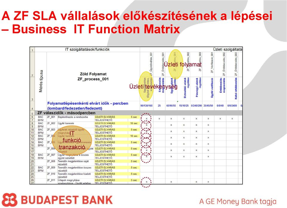 Business IT Function Matrix