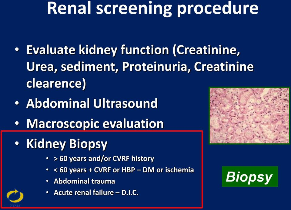 Macroscopic evaluation Kidney Biopsy > 60 years and/or CVRF history < 60