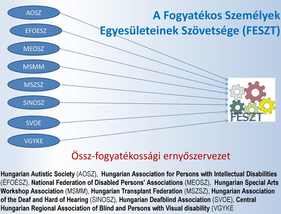 Associations (MEOSZ), Hungarian Special Arts Workshop Association (MSMM), Hungarian Transplant Federation (MSZSZ), Hungarian Association of the Deaf