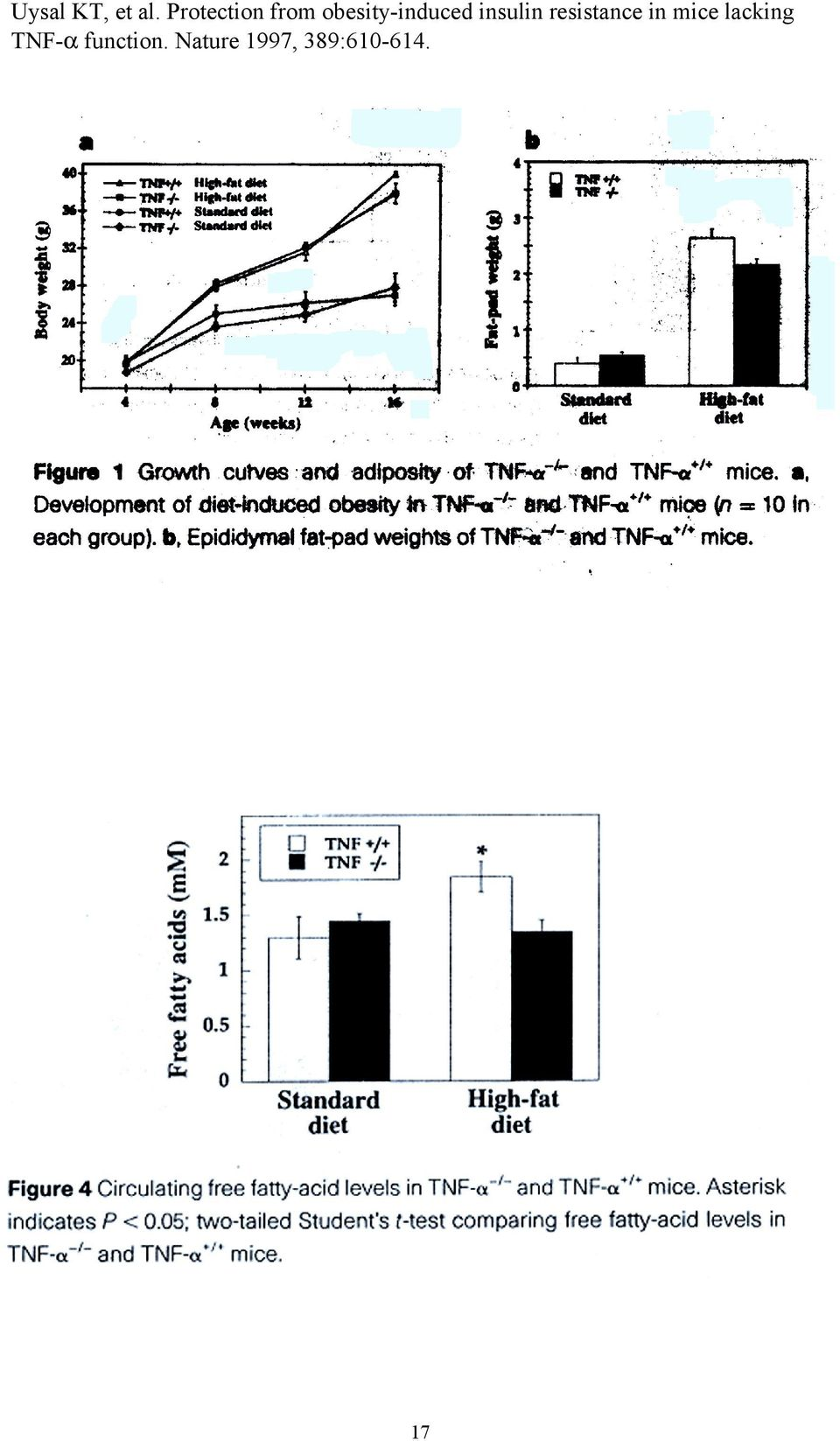 insulin resistance in mice