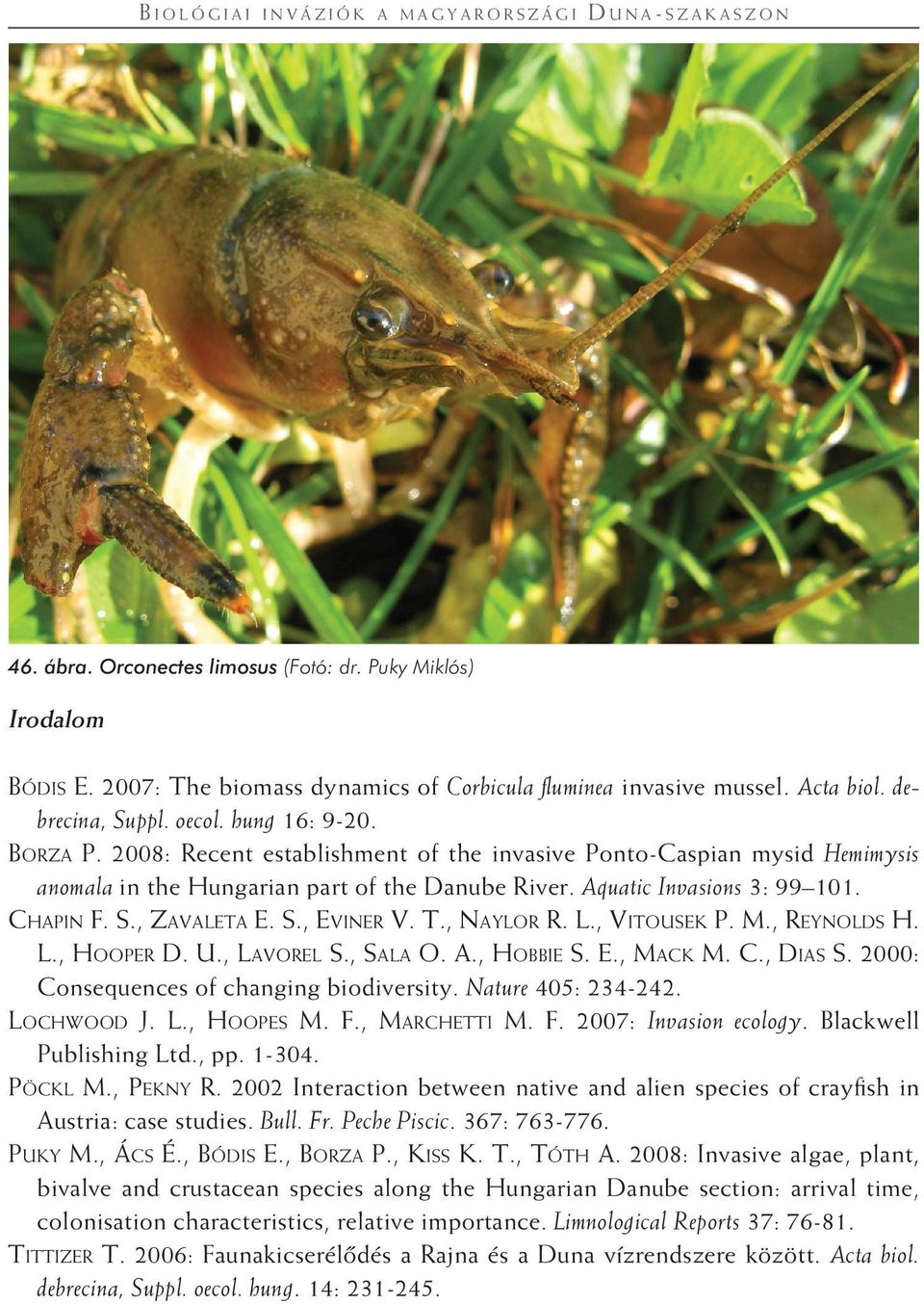 2008: Recent establishment of the invasive Ponto-Caspian mysid Hemimysis anomala in the Hungarian part of the Danube River. Aquatic Invasions 3: 99 101. Chapin F. S., Zavaleta E. S., Eviner V. T.