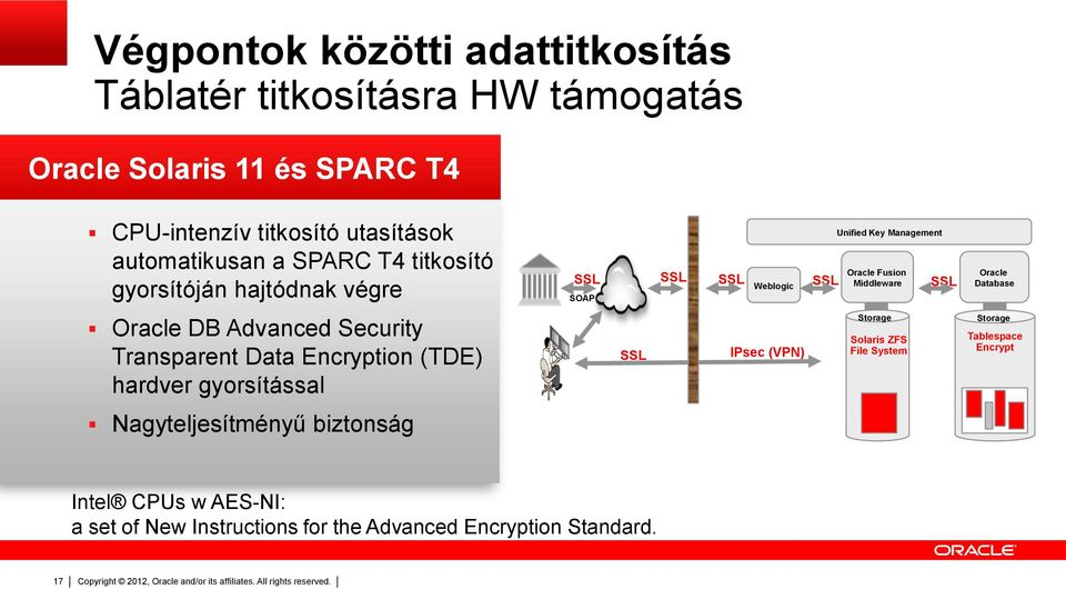 SSL Oracle Database Oracle DB Advanced Security Transparent Data Encryption (TDE) hardver gyorsítással SSL IPsec (VPN) Storage Solaris ZFS