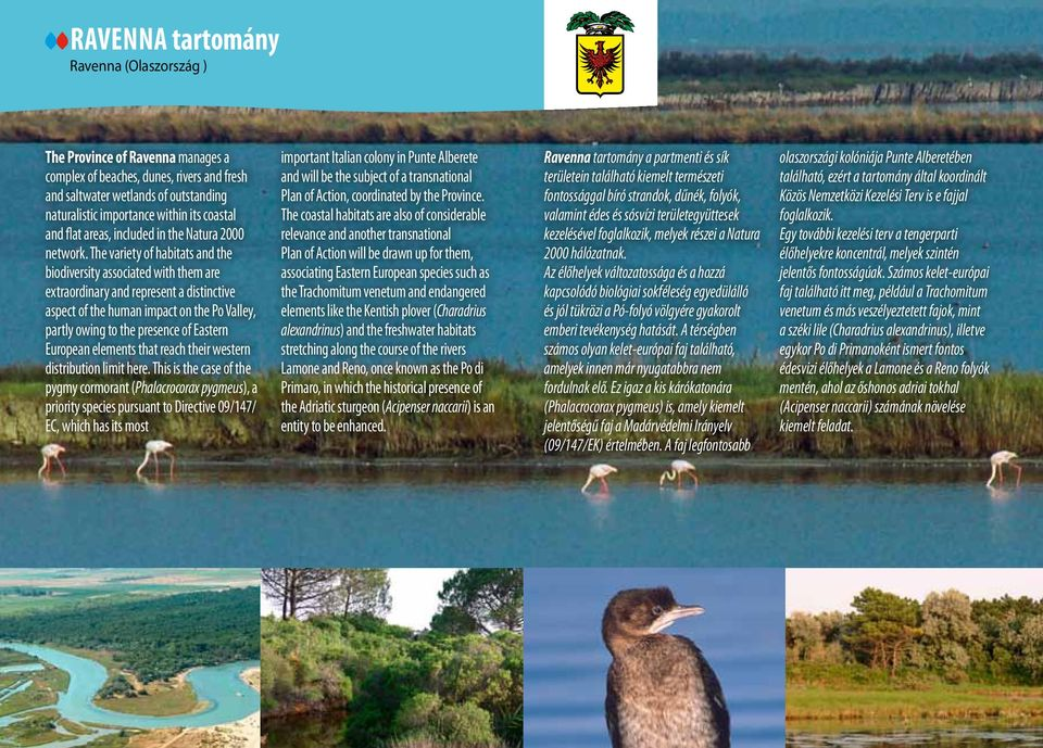 The variety of habitats and the biodiversity associated with them are extraordinary and represent a distinctive aspect of the human impact on the Po Valley, partly owing to the presence of Eastern