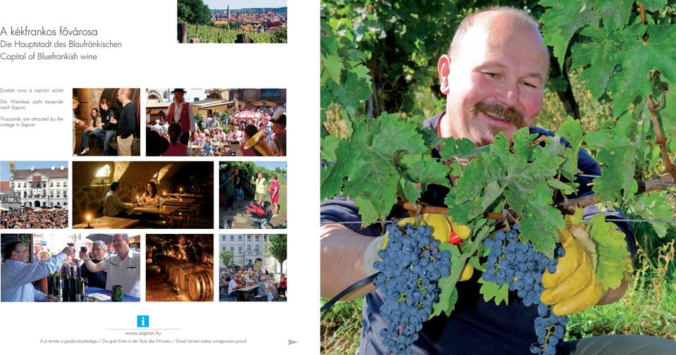 nach Sopron Thousands are attracted by the vintage in Sopron i A jó termés a