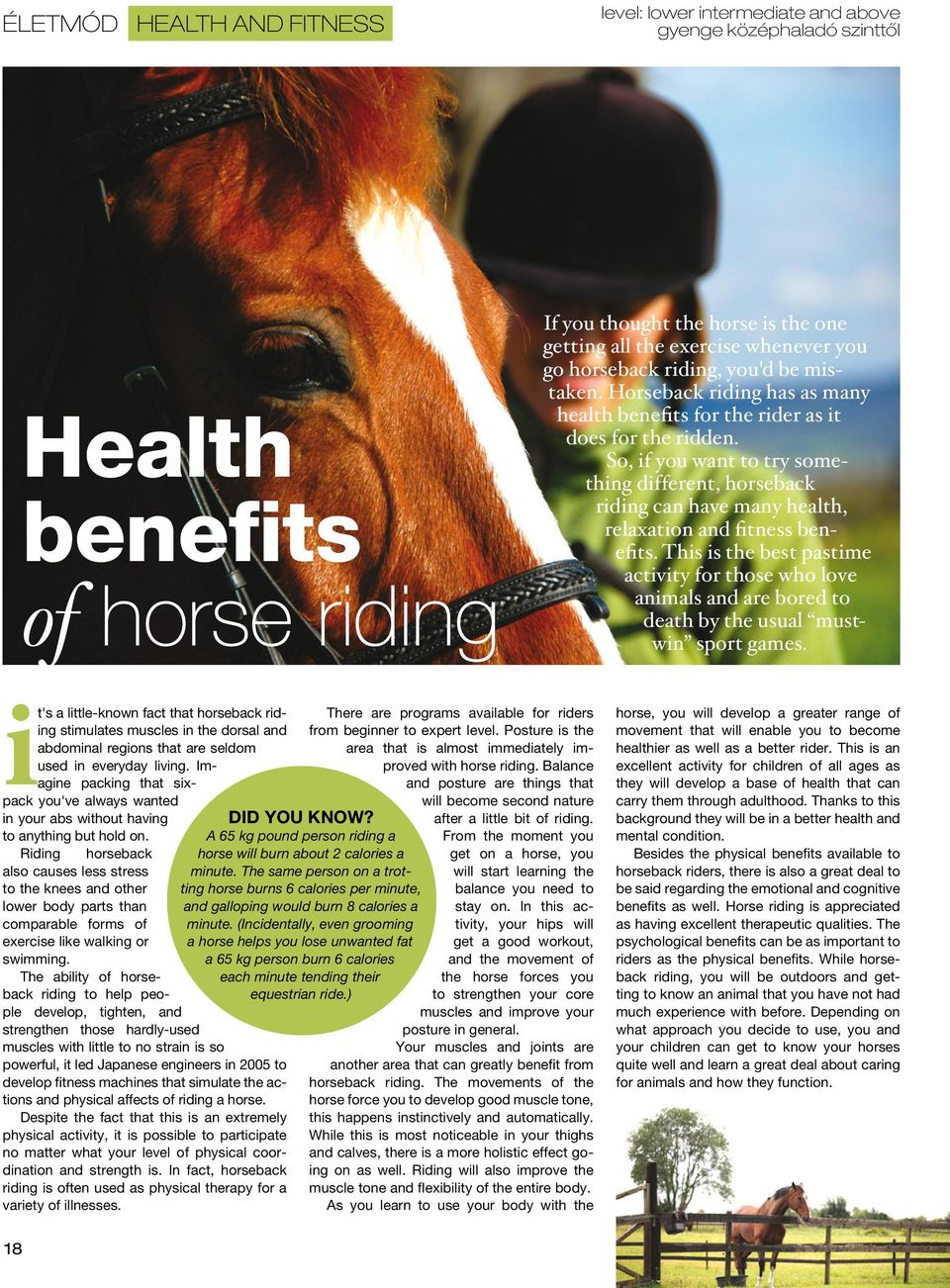 So, if you want to try something different, horseback riding can have many health, relaxation and fitness benefits.