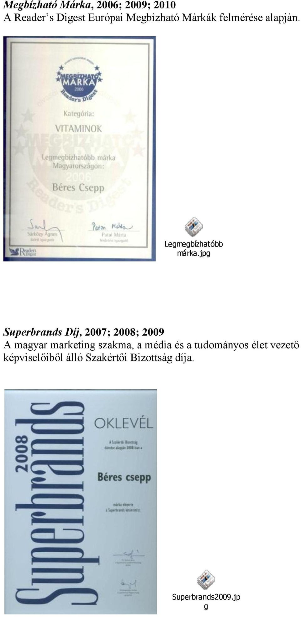 jpg Superbrands Díj, 2007; 2008; 2009 A magyar marketing szakma, a
