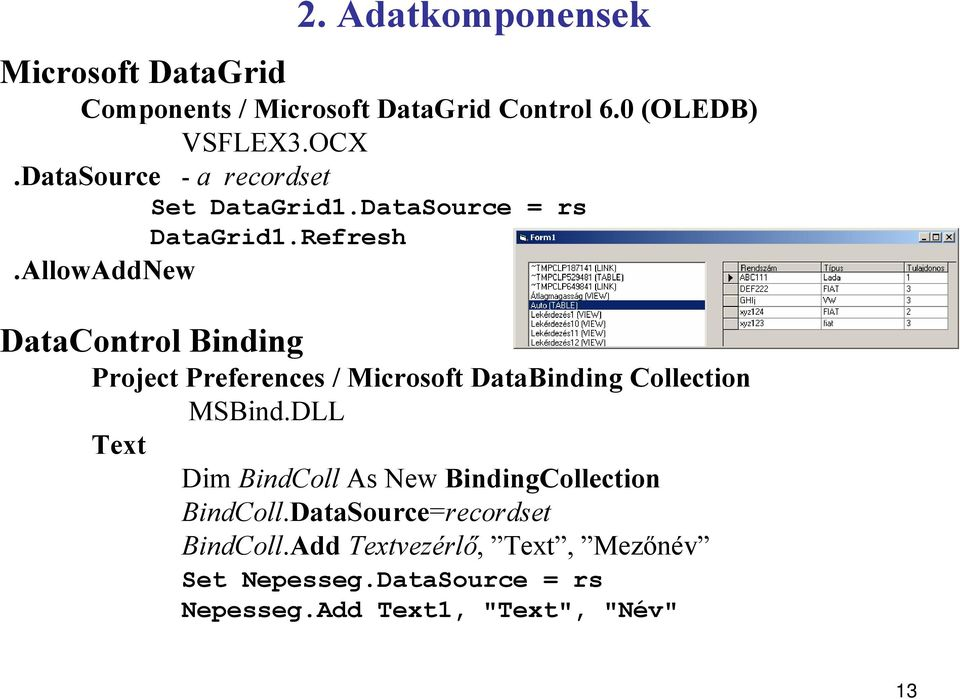AllowAddNew DataControl Binding Project Preferences / Microsoft DataBinding Collection MSBind.