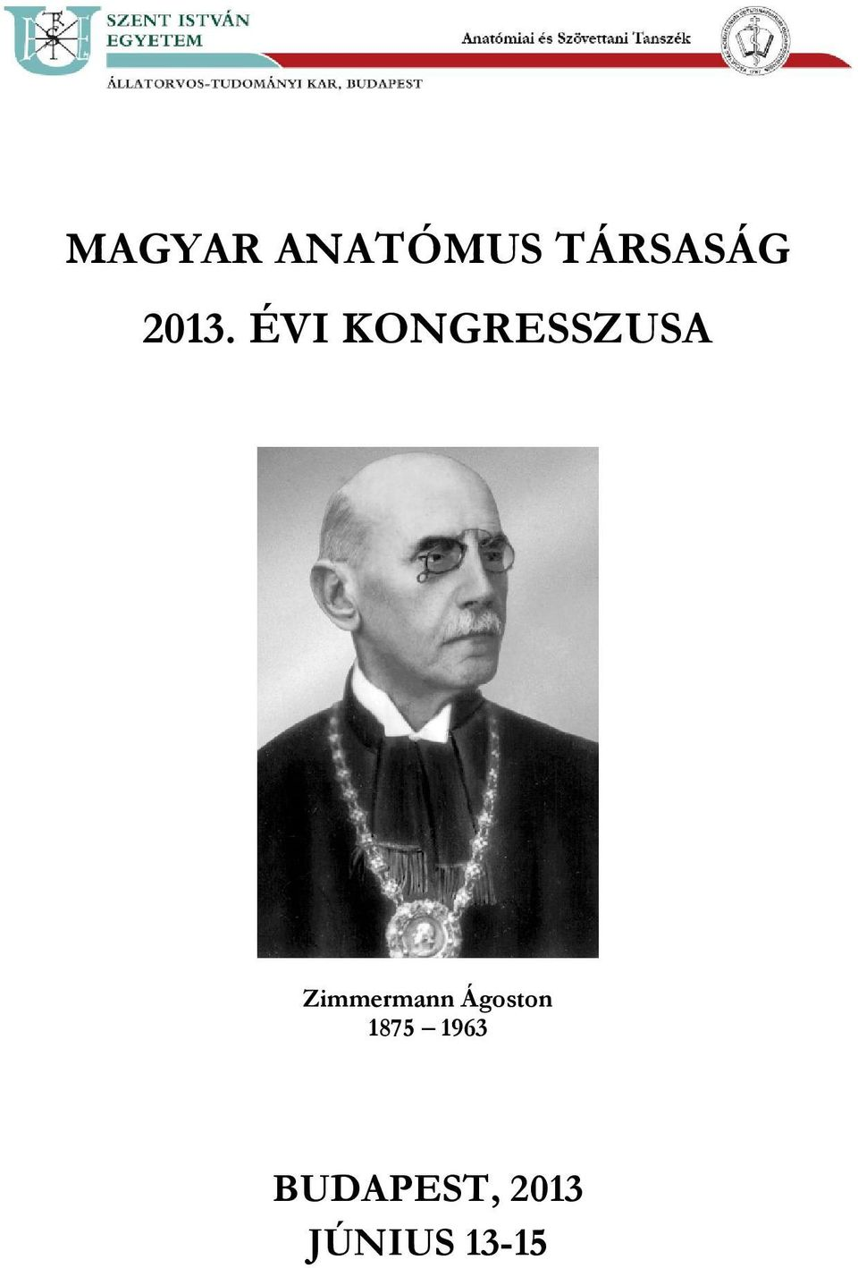Zimmermann Ágoston 1875