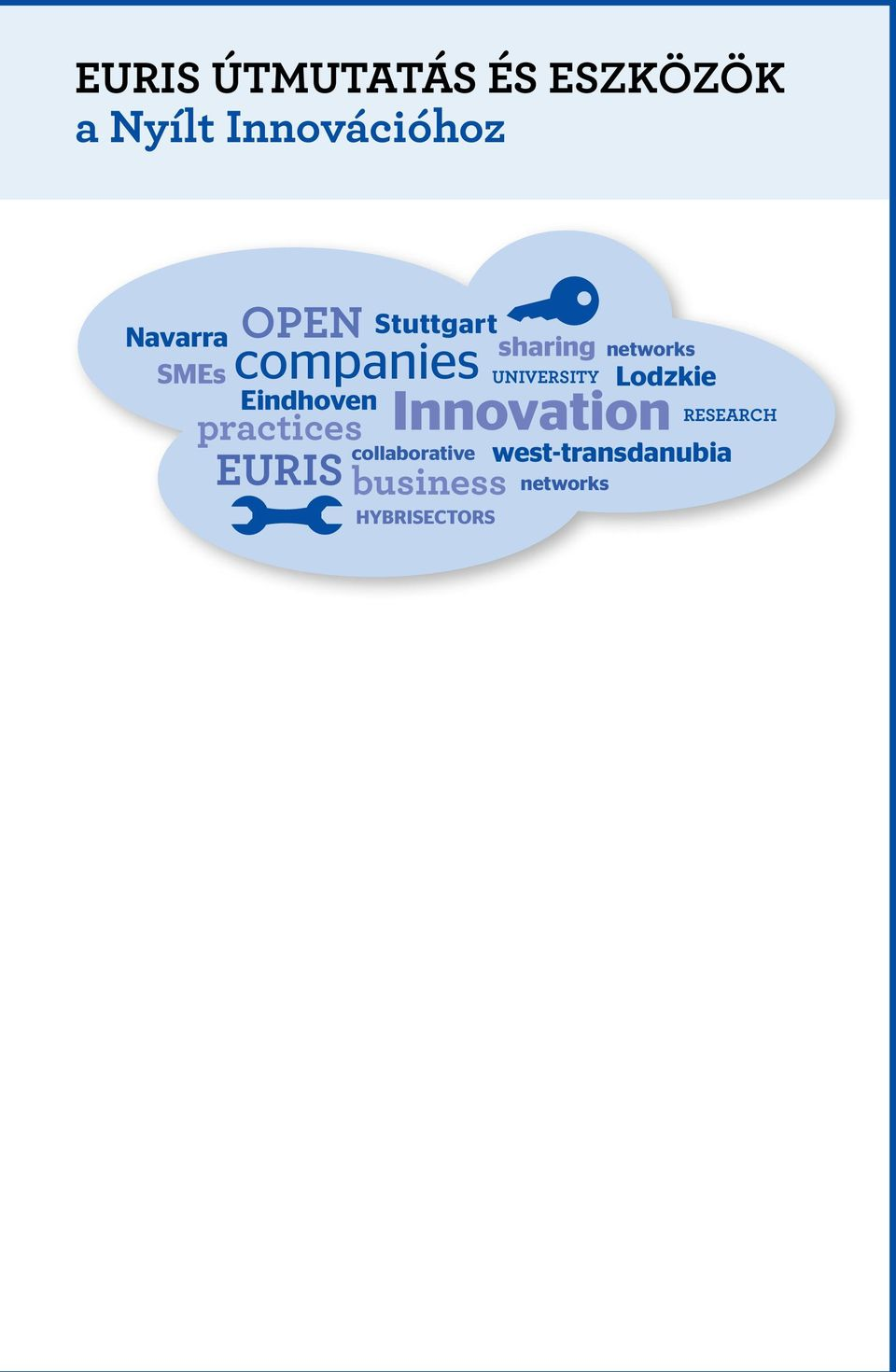 collaborative EURIS business Innovation hybrisectors