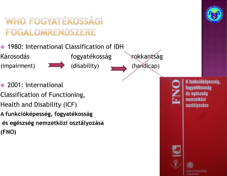 International Classification of Functioning, Health and Disability