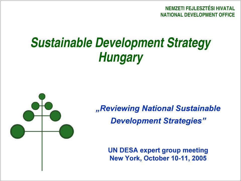 Development Strategies UN DESA expert