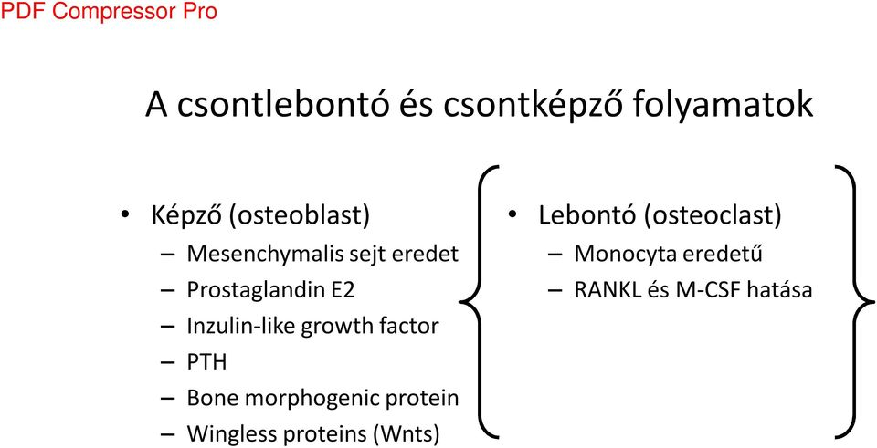 growth factor PTH Bone morphogenic protein Wingless proteins