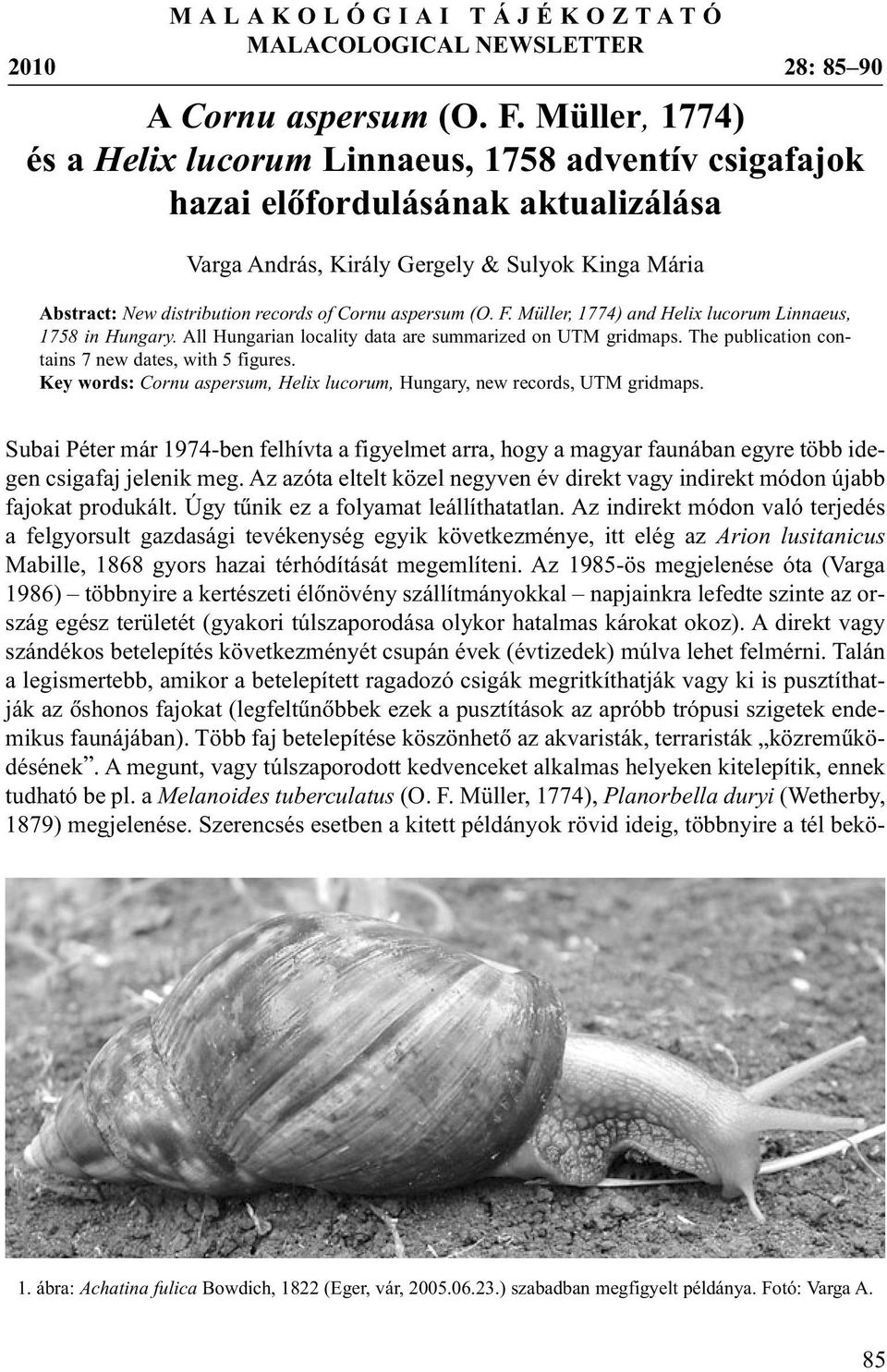 aspersum (O. F. Müller, 1774) and Helix lucorum Linnaeus, 1758 in Hungary. All Hungarian locality data are summarized on UTM gridmaps. The publication contains 7 new dates, with 5 figures.