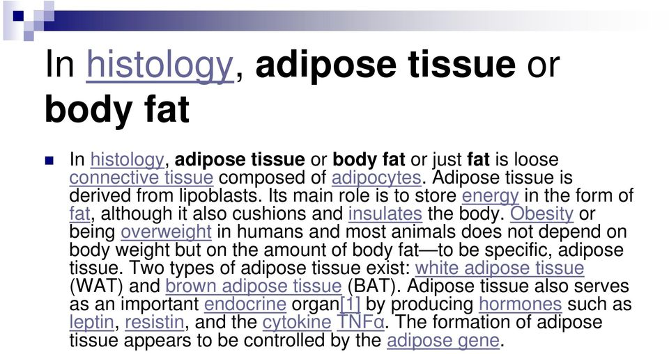 Obesity or being overweight in humans and most animals does not depend on body weight but on the amount of body fat to be specific, adipose tissue.
