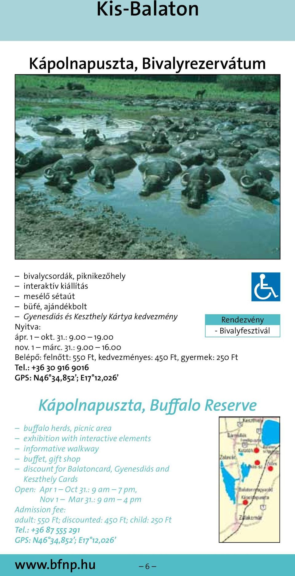 : +36 30 916 9016 GPS: N46 34,852 ; E17 12,026 Kápolnapuszta, Buffalo Reserve buffalo herds, picnic area exhibition with interactive elements informative walkway buffet, gift shop